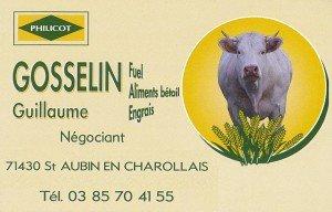 logo-gosselin-fuel-2-300x192